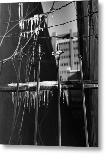 Icy Gates Metal Print by Jim Furrer