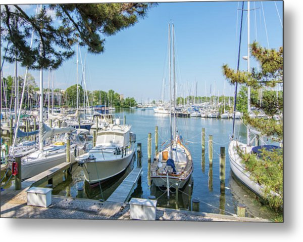 Idle Boats Back Creek Annapolis Metal Print