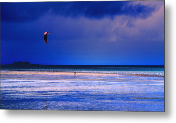 If I Had Wings Metal Print by Holly Kempe