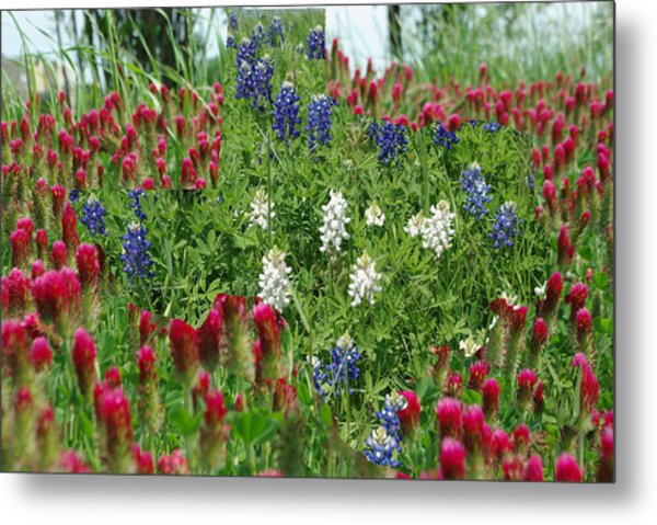 Illusions Of Texas In Red White Blue Metal Print