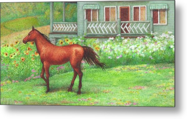 Illustrated Horse Summer Garden Metal Print