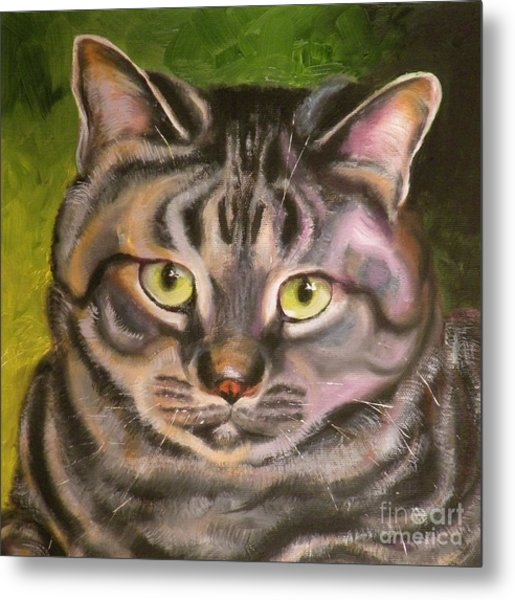 Im Your Man Tabby Metal Print