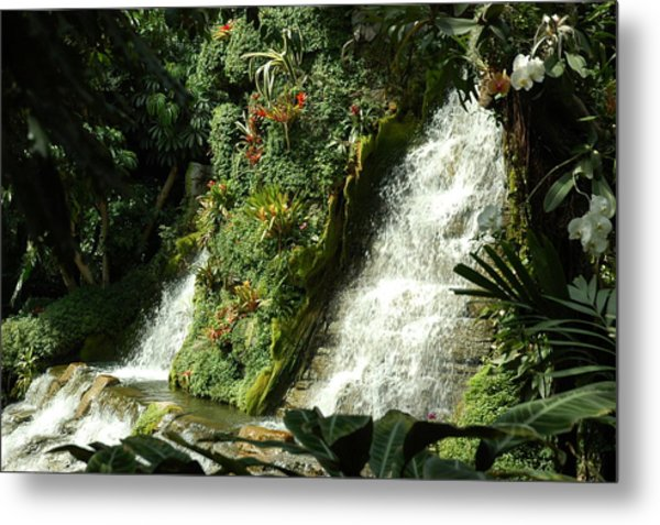Immense Beauty Metal Print by Lori Mellen-Pagliaro