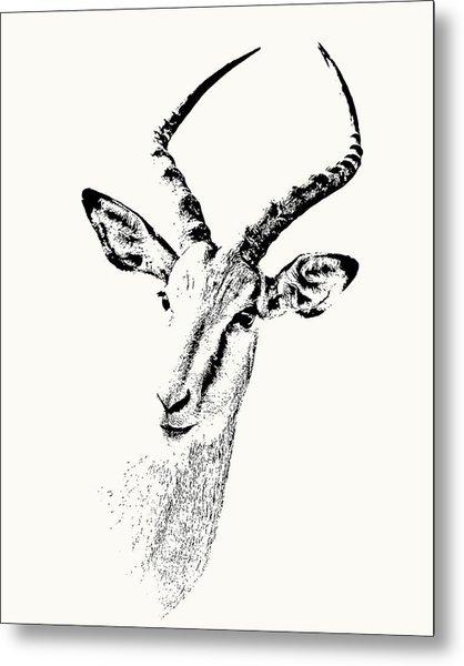 Impala Antelope Portrait Metal Print