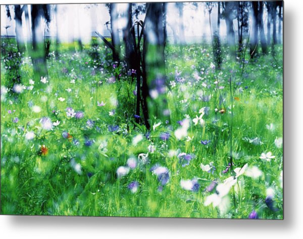 Impressionistic Photography At Meggido 1 Metal Print