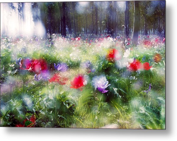 Impressionistic Photography At Meggido 2 Metal Print