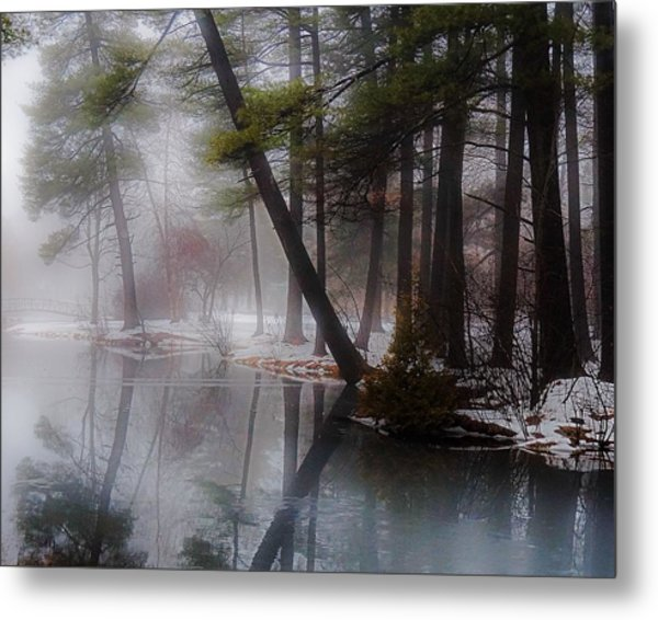 In A Fog Metal Print