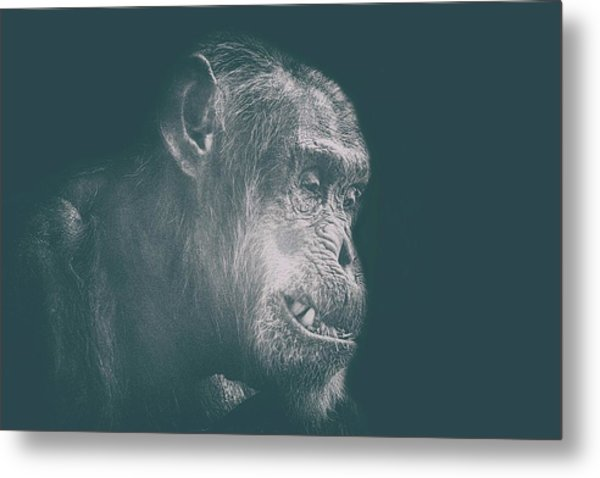 In Deep Thought Metal Print