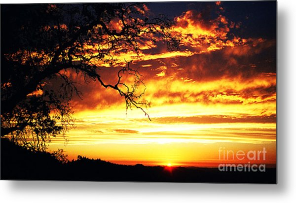 In Memory Of Metal Print by JoAnn SkyWatcher