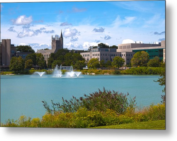 In The Afternoon Metal Print