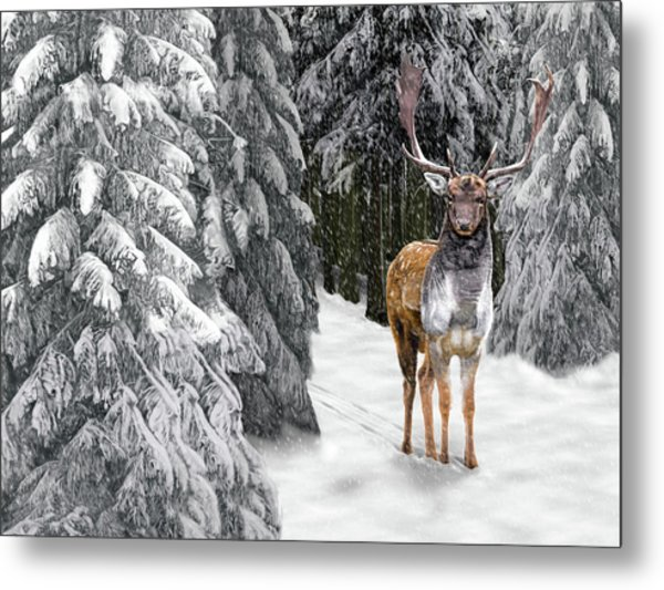 In The Bleak Midwinter Metal Print