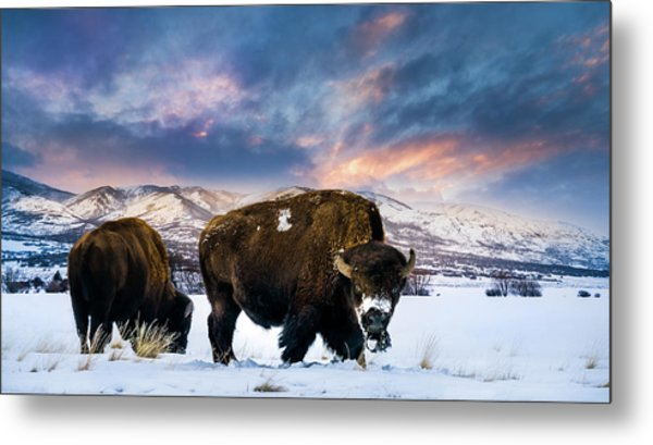 In The Grips Of Winter Metal Print