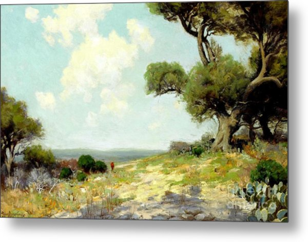 In The Hills Of Southwest Texas 1912 Metal Print