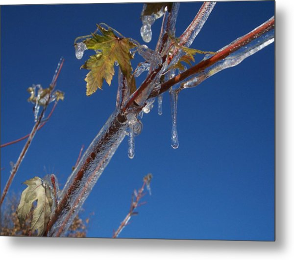 In The Ice Metal Print by Michael Parsons