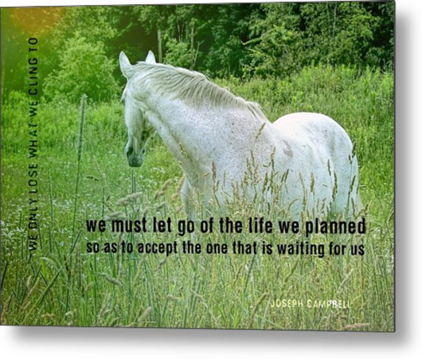 In The Meadow Quote Metal Print by JAMART Photography