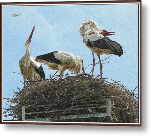 In The Nest Metal Print