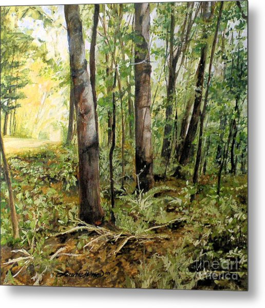 In The Shaded Forest  Metal Print