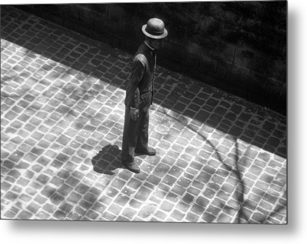 In The Shadows Metal Print by Jez C Self