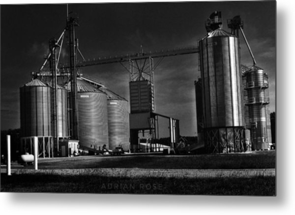 In The Still- Black And White Metal Print