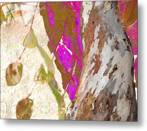 In The Trees Metal Print
