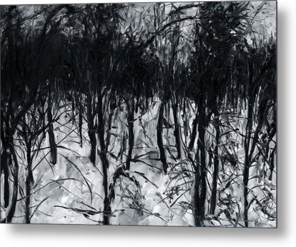 In The Woods 7 Metal Print