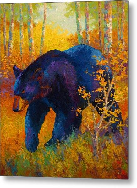 In To Spring - Black Bear Metal Print