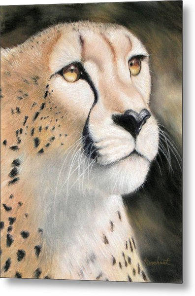 Intensity - Cheetah Metal Print