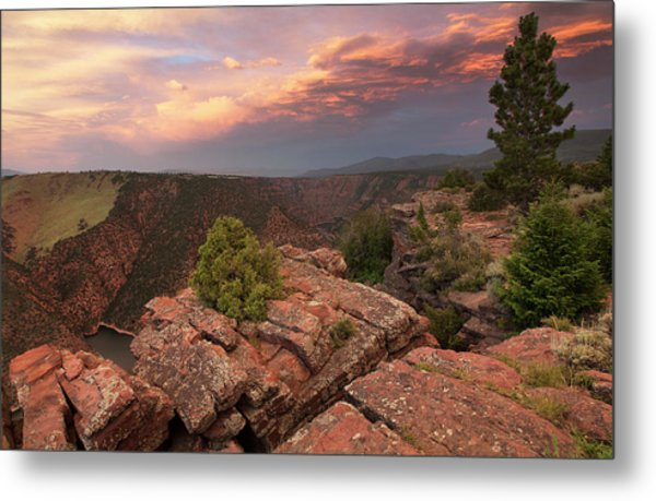 Into Red Canyon Metal Print by David Halter