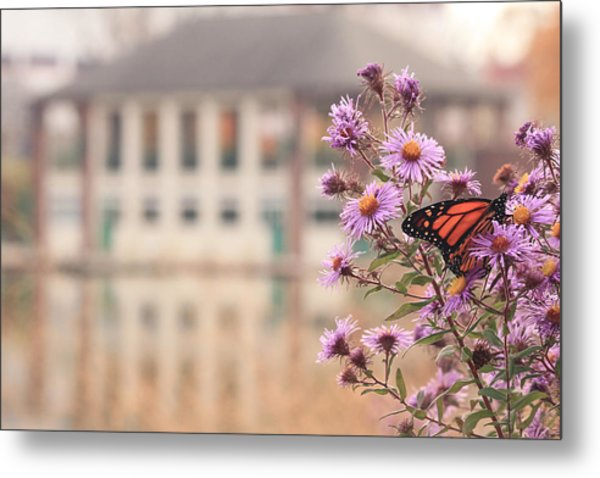 Into The Asters Metal Print