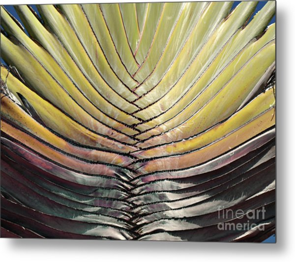 Into The Fold Metal Print