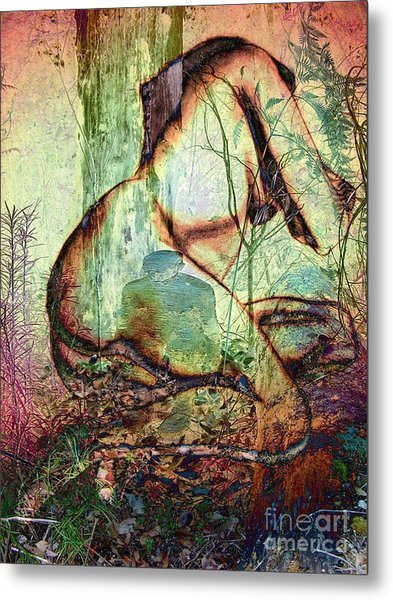 Into The Forest 10 Metal Print