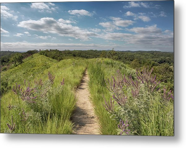 Metal Print featuring the photograph Into The Loess Hills by Susan Rissi Tregoning
