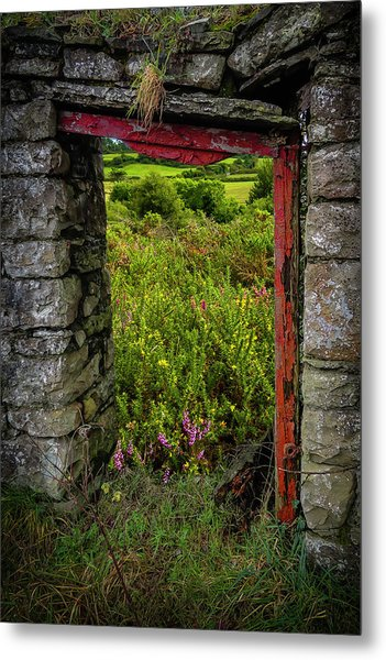 Metal Print featuring the photograph Into The Magical Irish Countryside by James Truett