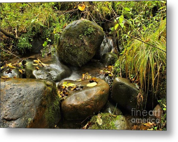Into The Stream 4 Metal Print