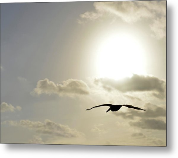 Into The Sun Metal Print