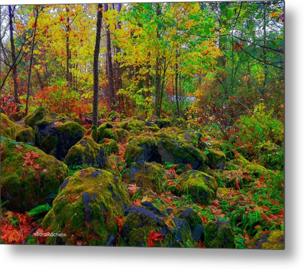 Into The Wild Metal Print by Sarai Rachel