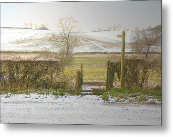 Invitation To A Winter Walk Metal Print