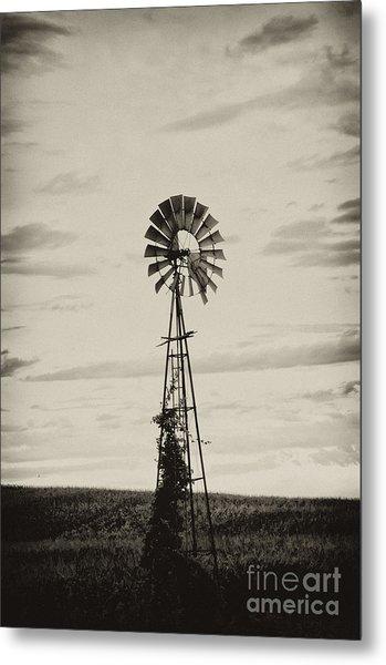 Iowa Windmill In A Corn Field Metal Print