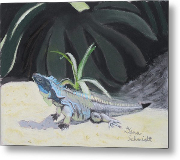 Iquana Lizard At Sarasota Jungle Metal Print