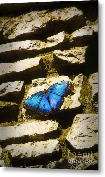 Iridescence-on-rocks Metal Print