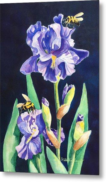 Iris And Bees Metal Print