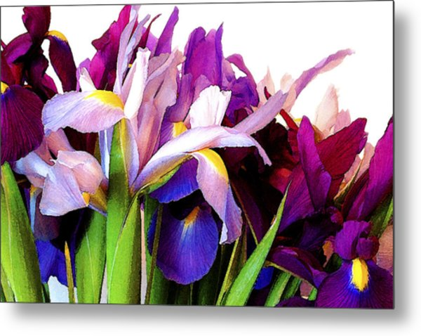 Iris Bouquet Metal Print