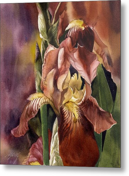 Iris In Red Metal Print