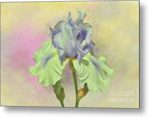 Iris Pastels Metal Print