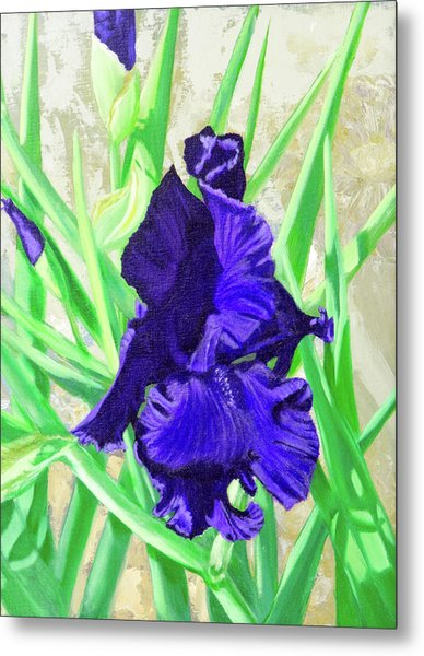 Iris Royalty Metal Print