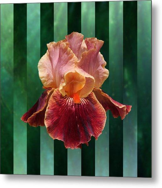 Iris Unleashed Metal Print