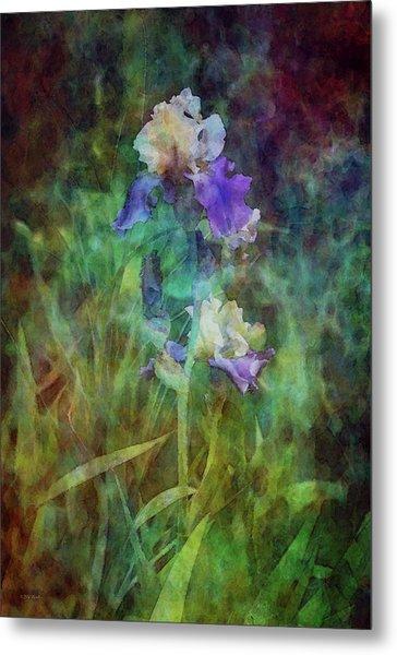 Irises 6618 Idp_3 Metal Print