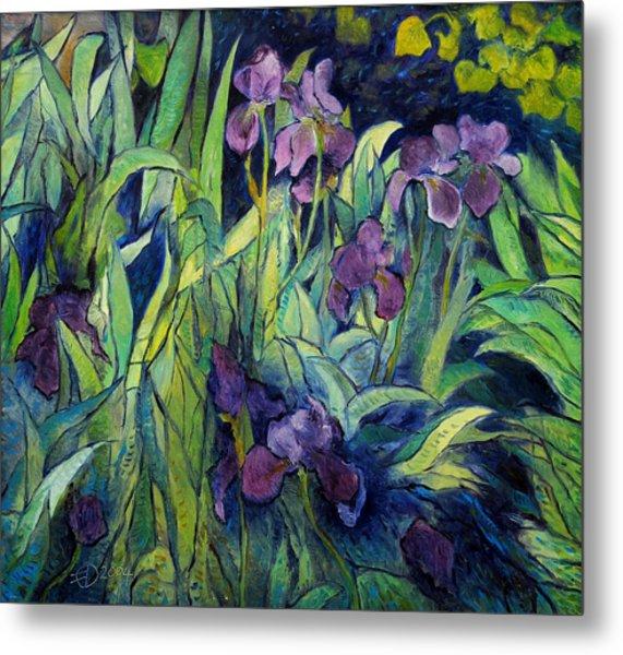 Irises At High Altitude Auribeau France 2004   Metal Print by Enver Larney