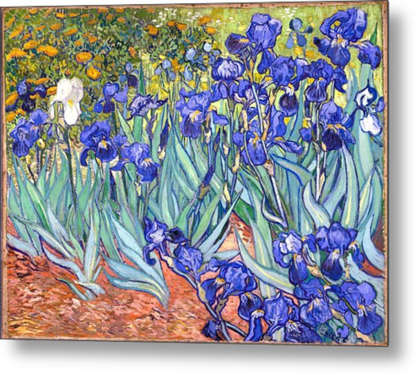 Metal Print featuring the painting Irises by Van Gogh