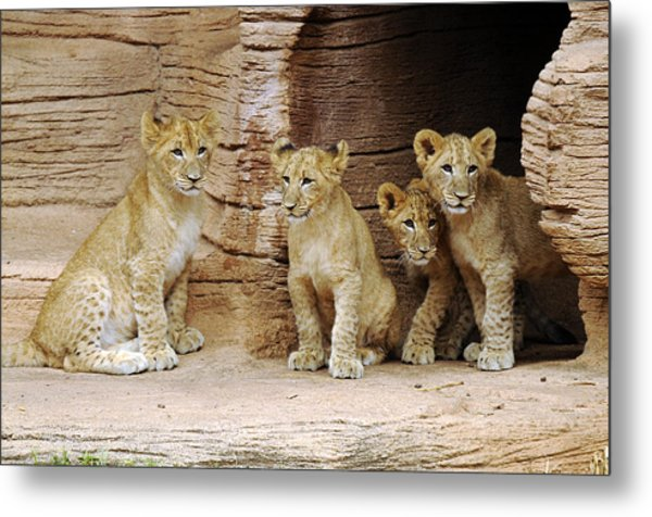 Is It Still There Metal Print by Keith Lovejoy